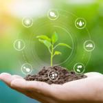 restaurant-regenerative-agriculture